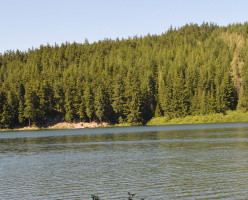 Тропа к озеру Лост лэйк (Lost Lake Nature Trail)