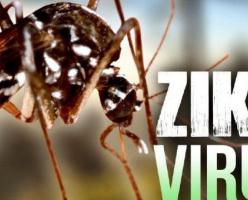 Правительство Канады напоминает о вирусе Зика во время путешествий