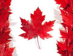 Переезд в Канаду: стоит ли?