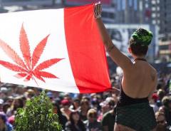 Канадцы тратят на марихуану столько же денег, сколько на вино