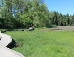 Маршрут Шорлайн (Shoreline Trail)