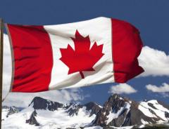 Канада огласила самые востребованные профессии и начала прием заявок на иммиграцию
