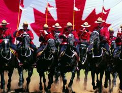 Полиция Канады разрешила офицерам-мусульманкам носить хиджаб