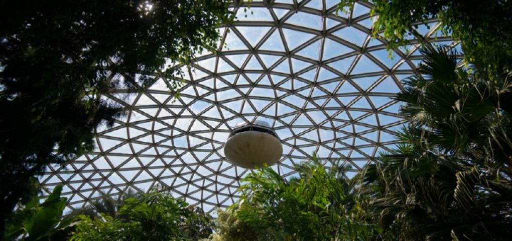 /place/tsvetochnaya-conservatoriya-bloedel-720x340.jpg