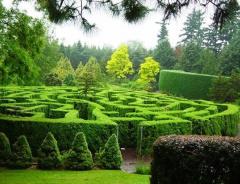 Ботанический сад Ван Дусена (VanDusen Botanical Garden)