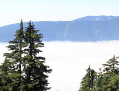 Гора Дэм (Dam Mountain)