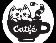В Ванкувере открылось первое «кошачье» кафе