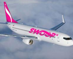 Перелет почти бесплатно – на рынок авиаперевозок выходит Swoop