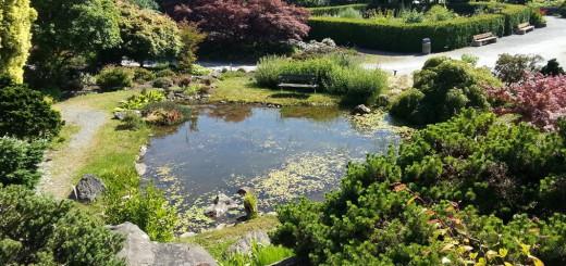 Ботанический сад UBC