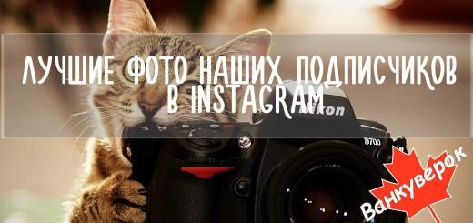 Фото novosti123.ru