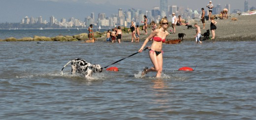 Пляжи для собак в Ванкувере