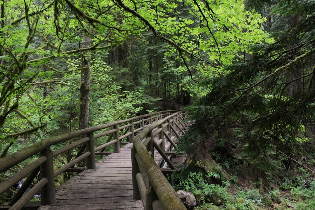 Фото vancouvertrails.com