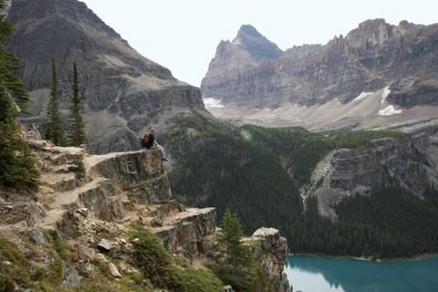 Фото vancouverisawesome.com