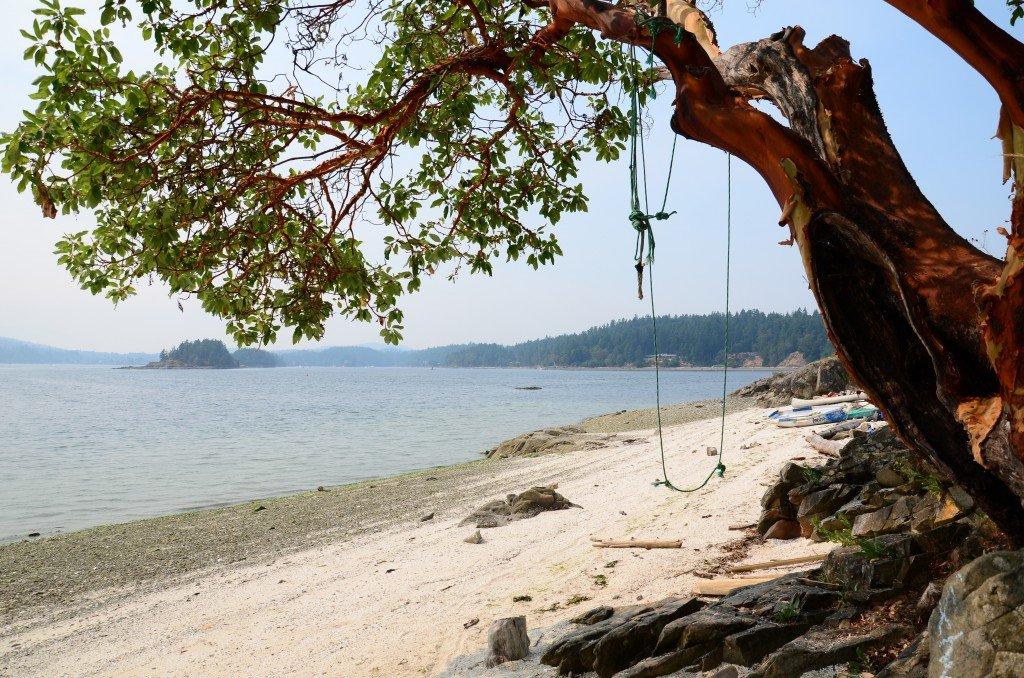 Фото saltspringmarket.com